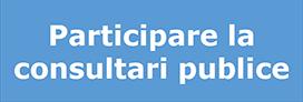 Participare la consultari publice